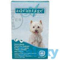 Buy Advantage Flea Control for Dogs With Offers, photo 1